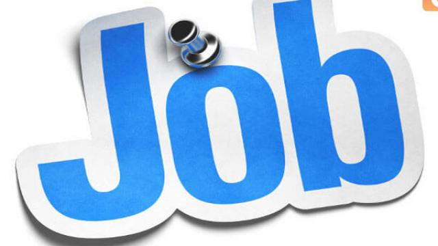 Wanted Store Executive : Purchasing Department Jobs