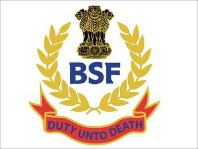 BSF Recruitment 2019 : 135 Assistant Commandant Posts