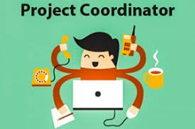 Project Coordinator Job : Required Good Knowledge in MS Office