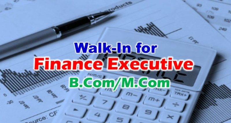 Looking For Finance Executive in Focus Management Limited