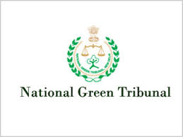 NGT Recruitment 2020 - 13 Stenographer, Office Assistant Posts