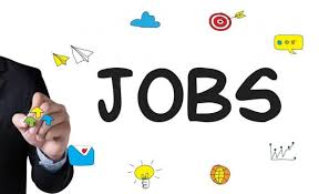 Required Computer Data Entry Operator - Salary Rs 25000