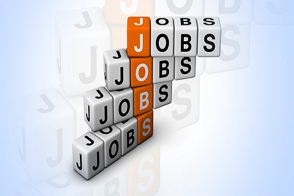 15 Data Entry Operator Needed in Mediprobe Services